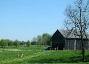 Elmwood Stock Farm tours