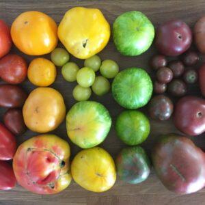 Tomatoes, Heirloom